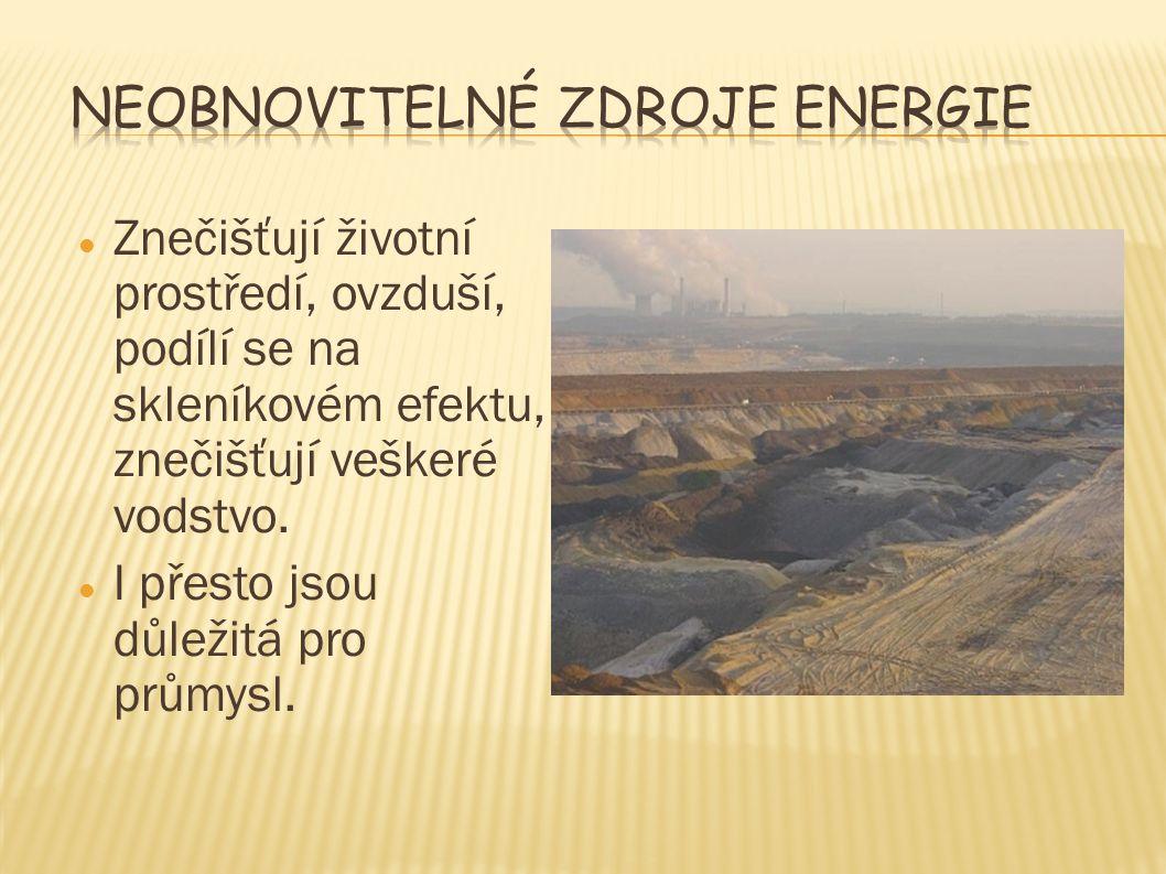 Znečišťují životní prostředí, ovzduší, podílí se na skleníkovém efektu, znečišťují veškeré vodstvo. I přesto jsou důležitá pro průmysl.