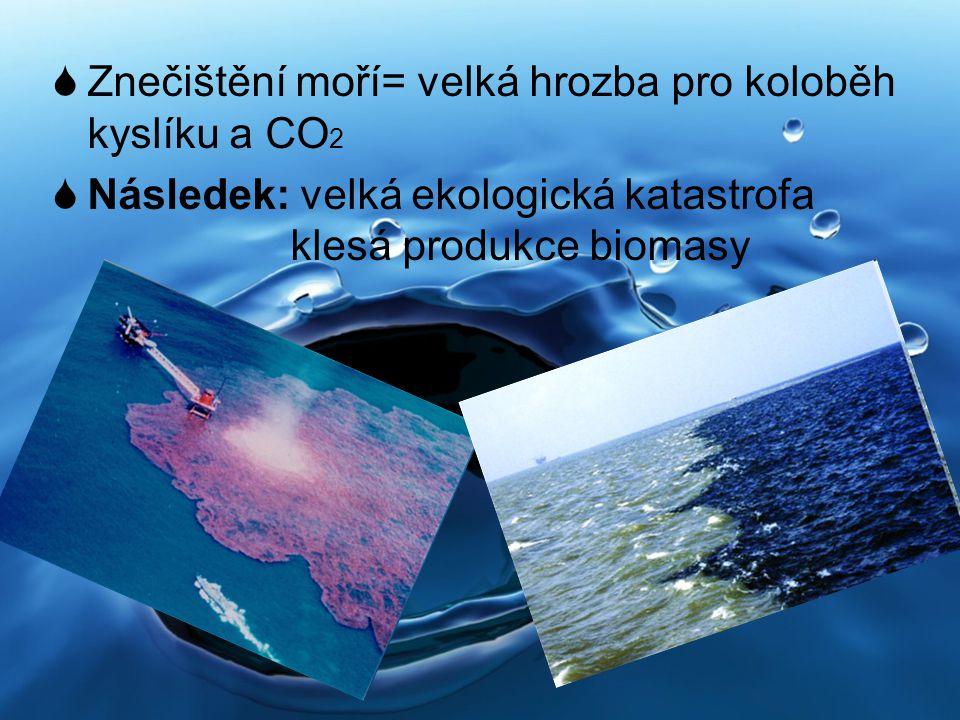  Znečištění moří= velká hrozba pro koloběh kyslíku a CO 2  Následek: velká ekologická katastrofa klesá produkce biomasy