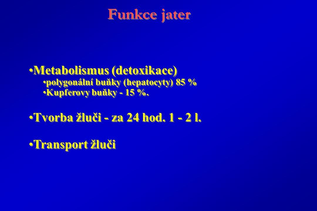 Funkce jater Metabolismus (detoxikace) polygonální buňky (hepatocyty) 85 % Kupferovy buňky - 15 %.