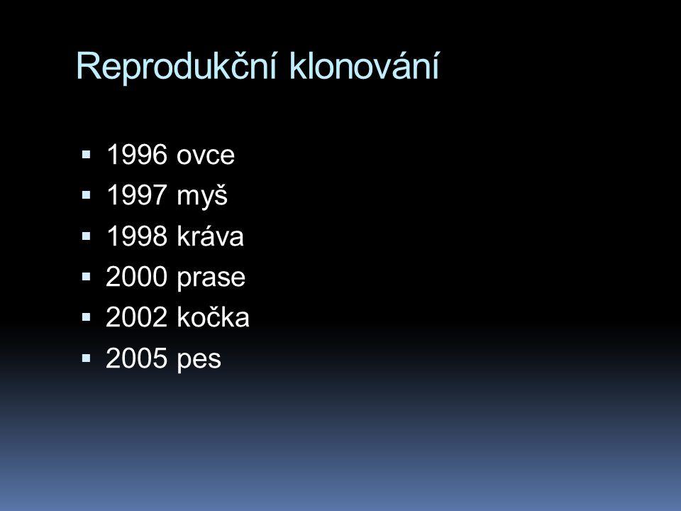 Reprodukční klonování  1996 ovce  1997 myš  1998 kráva  2000 prase  2002 kočka  2005 pes