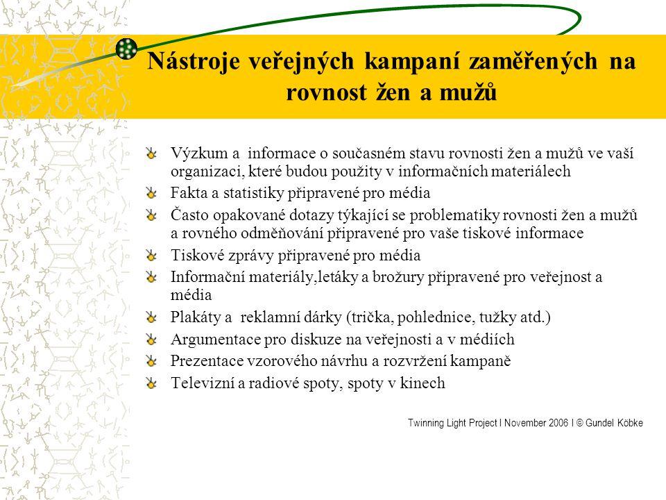 Druhy politických nástrojů a prostředků Informační a popisné nástroje: kampaně, pokyny, školení, vzdělávací aktivity, konference a semináře Partnerské nástroje: sítě kontaktů, partnerství a vzájemný dialog Závazné nástroje: zákony, ustanovení a právní nařízení Zdroje informací: studie, internet, zprávy Twinning Light Project l November 2006 l © Gundel Köbke
