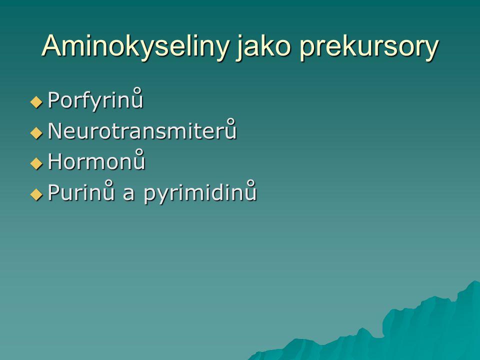 Aminokyseliny jako prekursory  Porfyrinů  Neurotransmiterů  Hormonů  Purinů a pyrimidinů