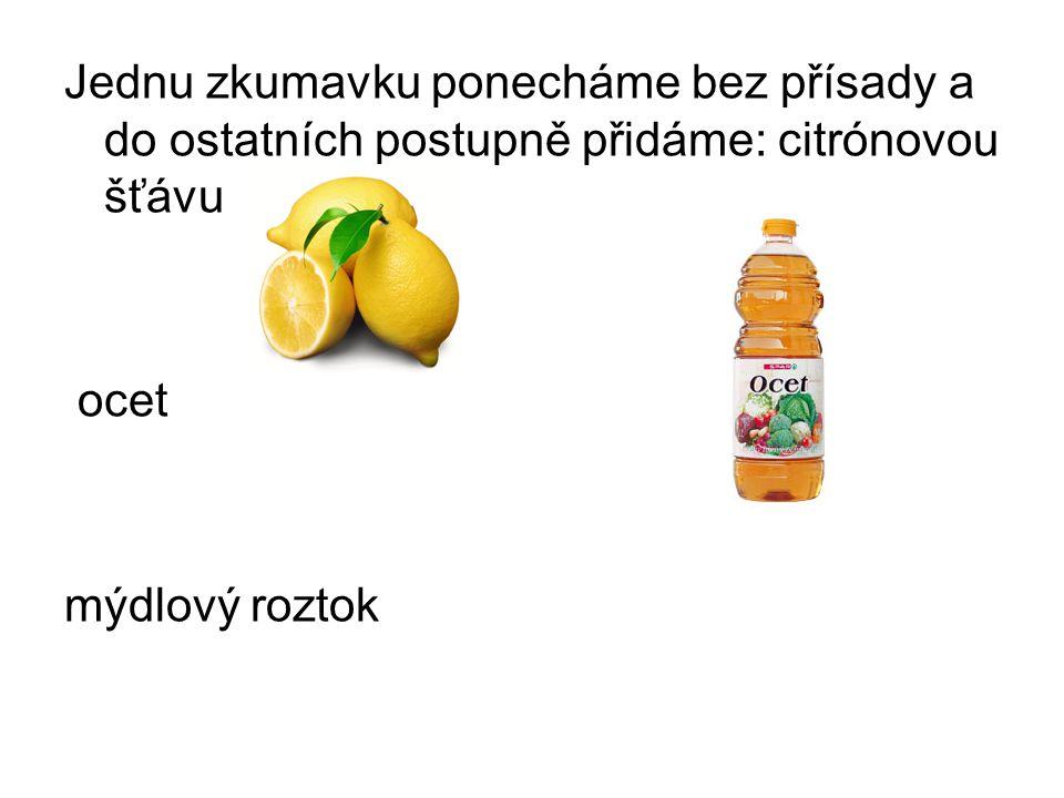 Jednu zkumavku ponecháme bez přísady a do ostatních postupně přidáme: citrónovou šťávu ocet mýdlový roztok