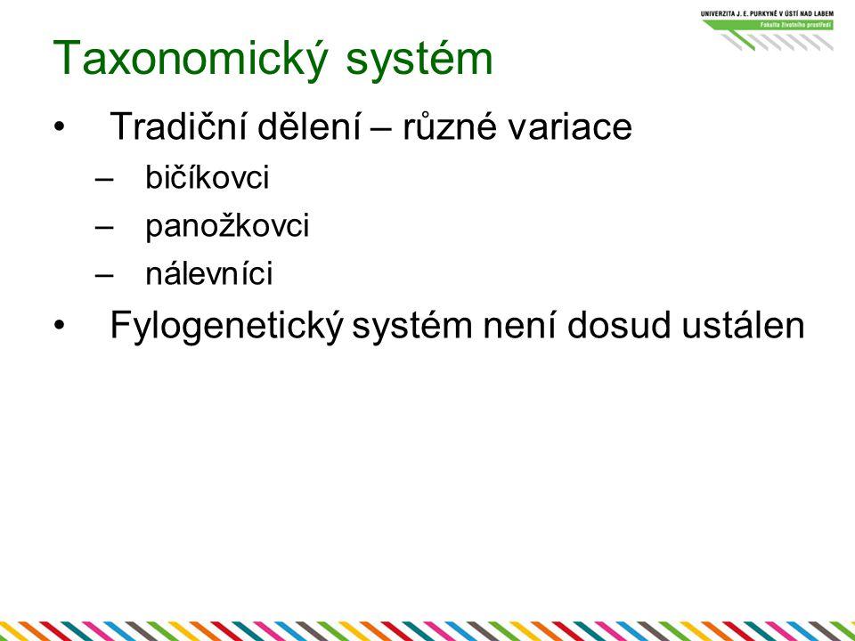 Taxonomický systém Tradiční dělení – různé variace –bičíkovci –panožkovci –nálevníci Fylogenetický systém není dosud ustálen