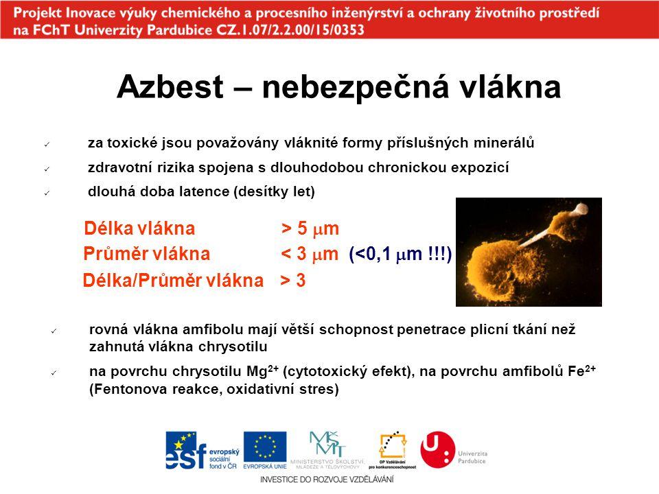 Azbest – zdravotní rizika azbestóza - doba latence 10 - 40 let (chrysotil) broncho-alveolární karcinom - doba latence 15 - 30 let (amfiboly) pleurální plak mesotheliom - doba latence 35 - 40 let (i 65 let) (amfiboly) John Darabant