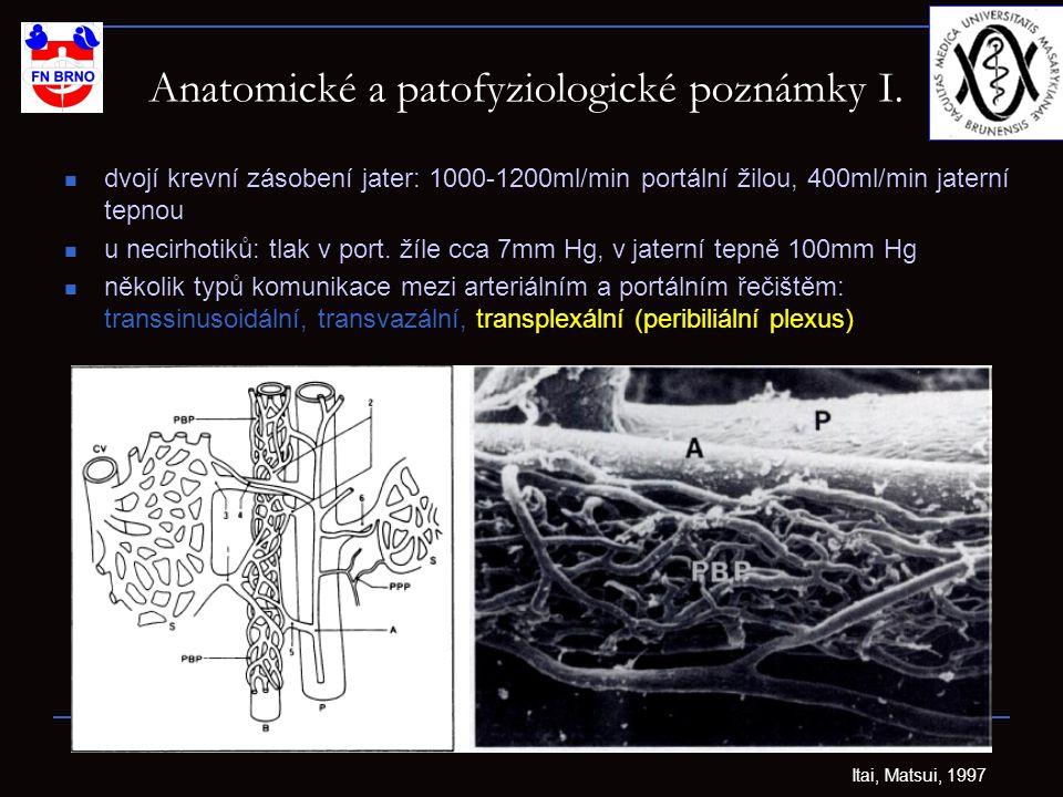 Anatomické a patofyziologické poznámky I.