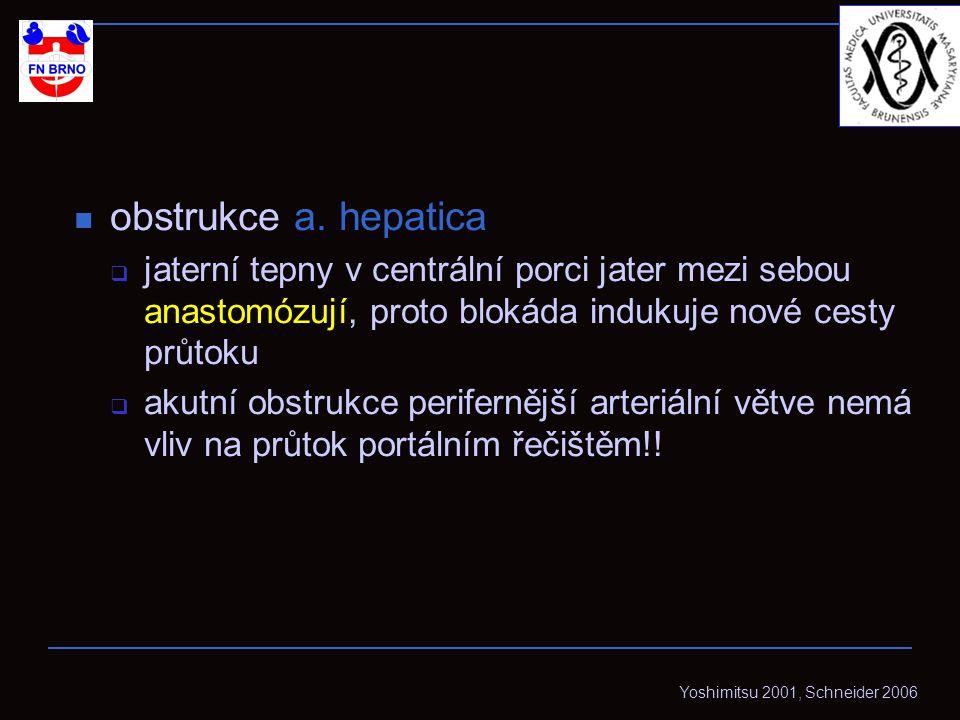 obstrukce a.