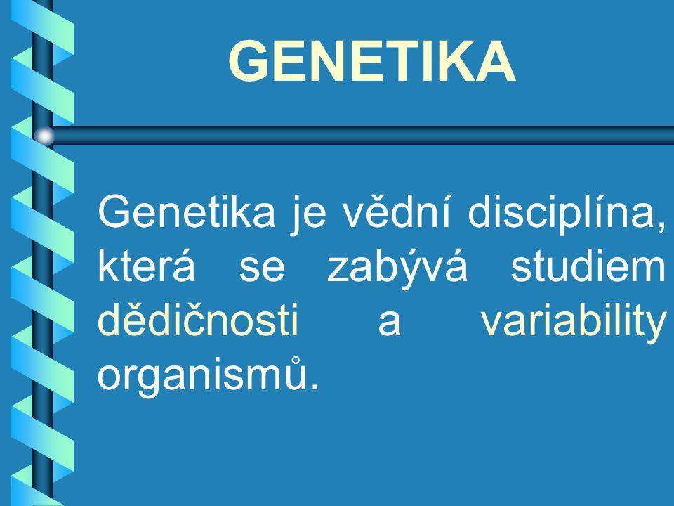GENETIKA Genetika je vědní disciplína, která se zabývá studiem dědičnosti a variability organismů.