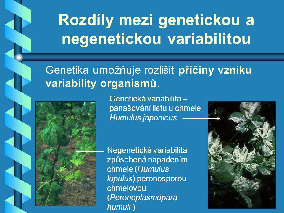 Rozdíly mezi genetickou a negenetickou variabilitou Genetika umožňuje rozlišit příčiny vzniku variability organismů. Genetická variabilita – panašován