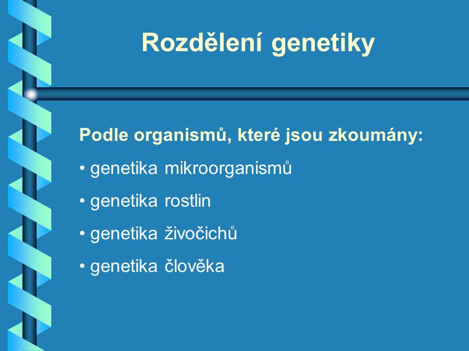 Rozdělení genetiky Podle organismů, které jsou zkoumány: genetika mikroorganismů genetika rostlin genetika živočichů genetika člověka