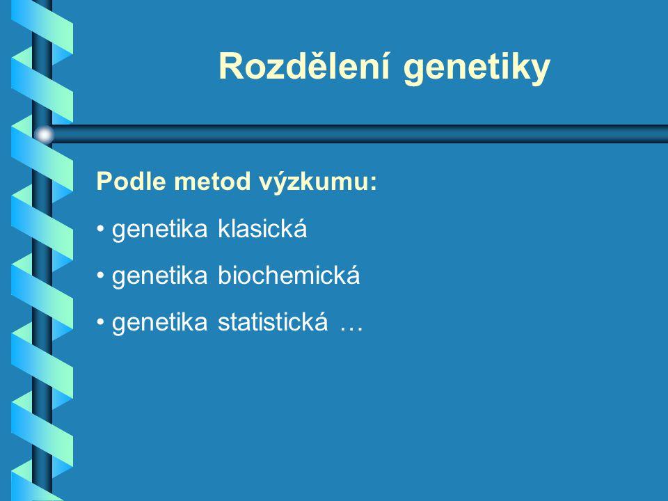 Rozdělení genetiky Podle metod výzkumu: genetika klasická genetika biochemická genetika statistická …