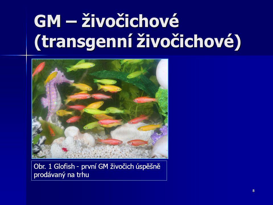 9 GM – živočichové – výhody a rizika.