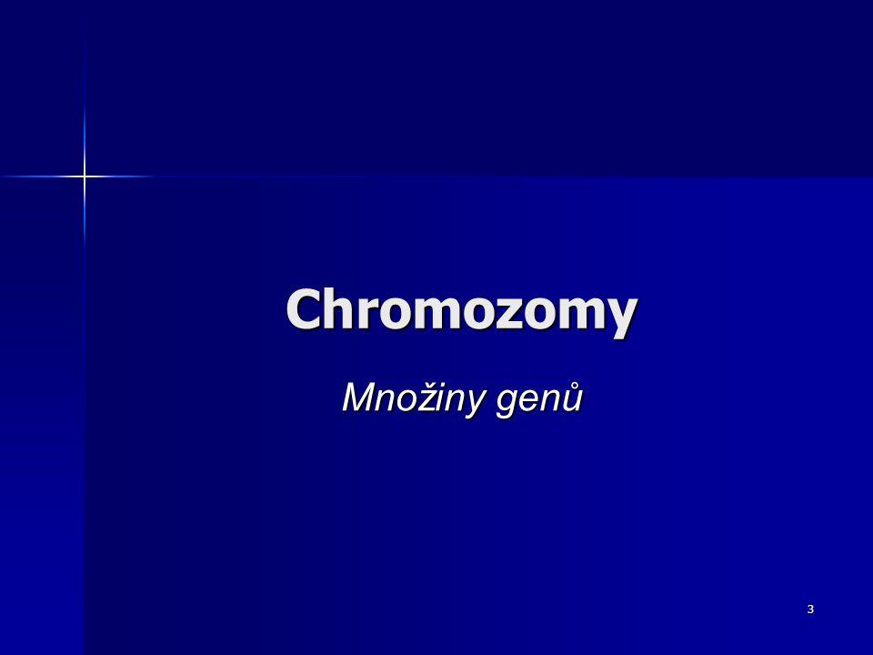 2 Číslo projektu:CZ.1.07/1.5.00/34.0554 Šablona:III/2 Inovace a zkvalitnění výuky prostřednictvím ICT Sada číslo:2_1 Název materiálu:VY_32_INOVACE_2_1_03_Chromozomy Autor:Ing.