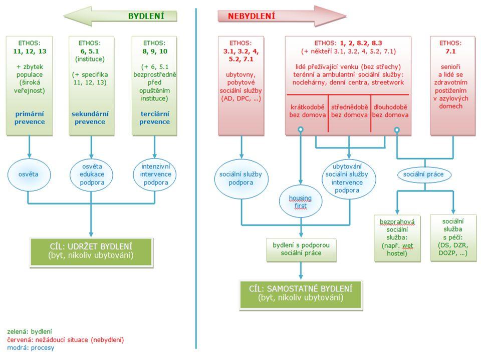 Příčiny bezdomovství materiální (nezaměstnanost, dluhy, ztráta živitele, oběť podvodu – chudoba) osobnostní (mentální, psychická, fyzická, osamělost, závislosti – nezralost) vztahové (manželské, generační, domácí násilí, zneužívání – absence podnětných vztahů) opuštění dětské instituce institucionální (opuštění dětské instituce, propuštění z vězení – chybějící zakořenění) často souběh nebo kombinace více faktorů