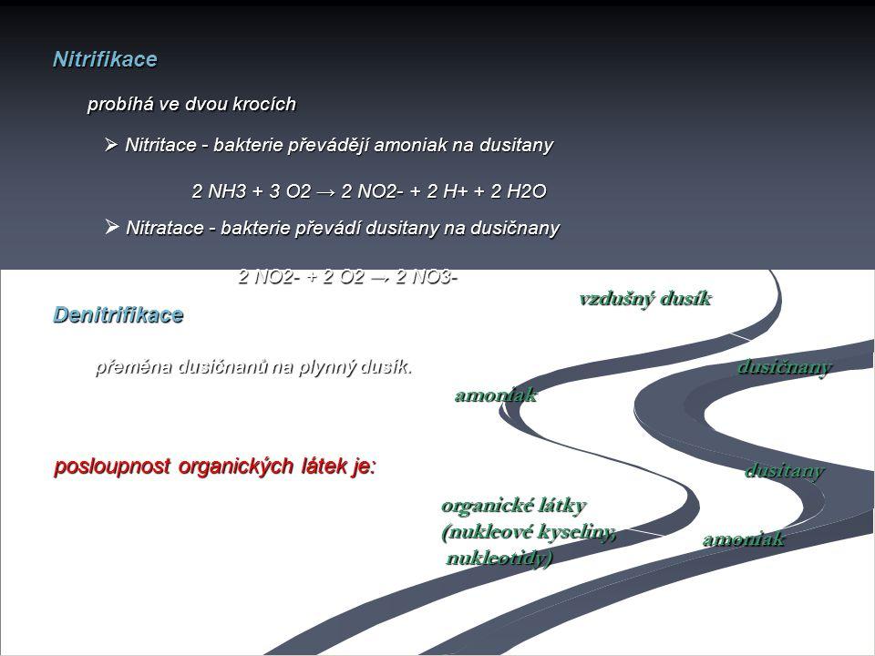 Nitrifikace probíhá ve dvou krocích  Nitritace - bakterie převádějí amoniak na dusitany 2 NH3 + 3 O2 → 2 NO2- + 2 H+ + 2 H2O Nitratace - bakterie pře