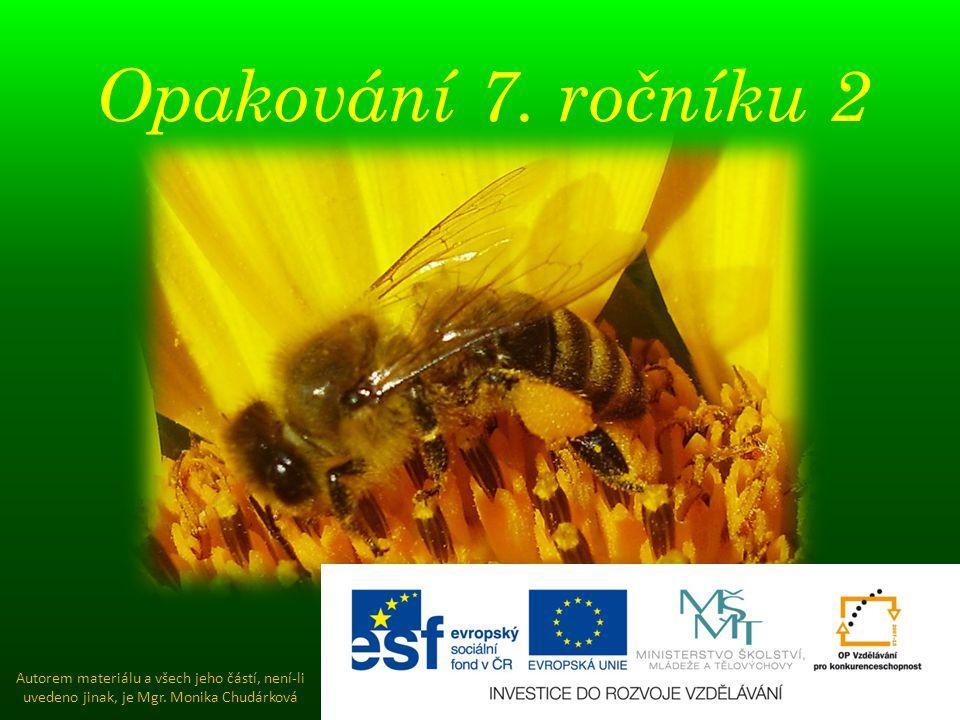 Opakování 7. ročníku 2 Autorem materiálu a všech jeho částí, není-li uvedeno jinak, je Mgr. Monika Chudárková