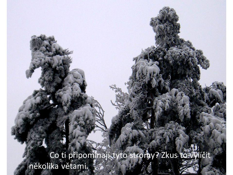 Co ti připomínají tyto stromy? Zkus to vylíčit několika větami.