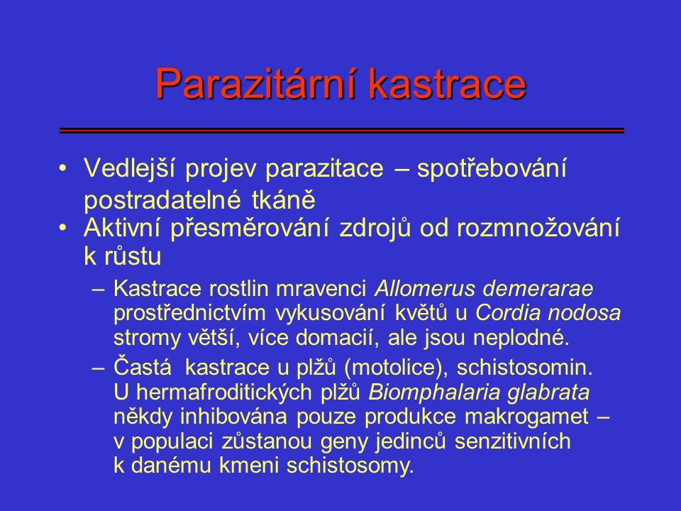 Parazitární kastrace Vedlejší projev parazitace – spotřebování postradatelné tkáně Aktivní přesměrování zdrojů od rozmnožování k růstu –Kastrace rostl