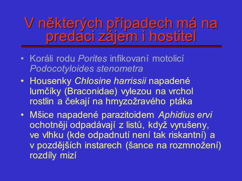 V některých případech má na predaci zájem i hostitel Koráli rodu Porites infikovaní motolicí Podocotyloides stenometra Housenky Chlosine harrissii nap