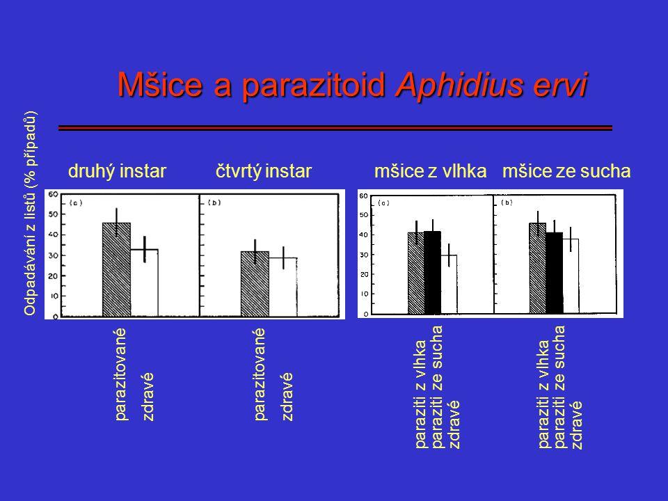 Mšice a parazitoid Aphidius ervi Mšice a parazitoid Aphidius ervi Odpadávání z listů (% případů) parazitované zdravé parazitované zdravé čtvrtý instar