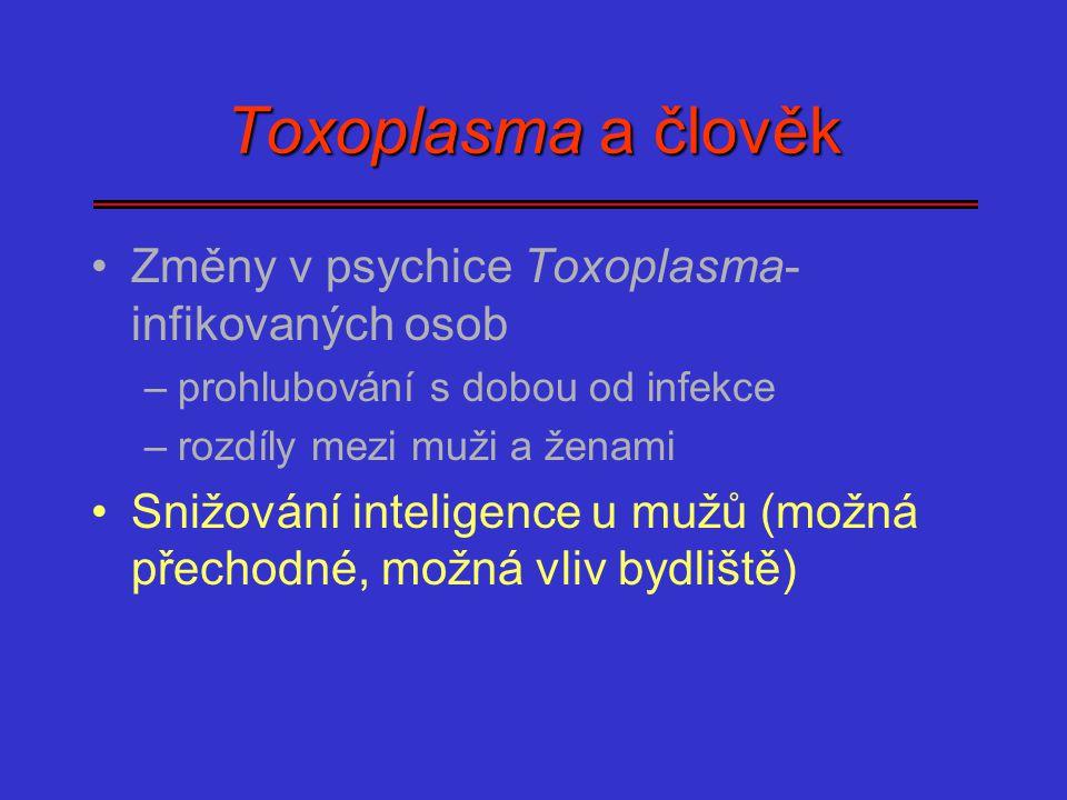 Toxoplasma a člověk Změny v psychice Toxoplasma- infikovaných osob –prohlubování s dobou od infekce –rozdíly mezi muži a ženami Snižování inteligence