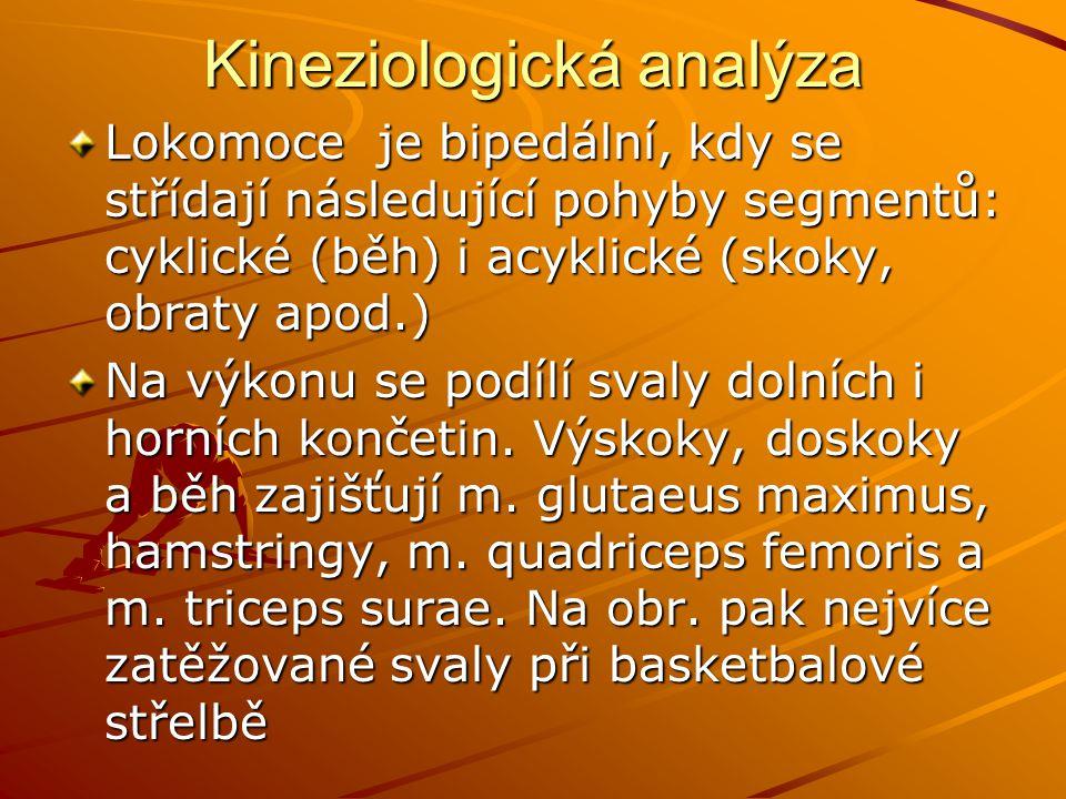 Kineziologická analýza Lokomoce je bipedální, kdy se střídají následující pohyby segmentů: cyklické (běh) i acyklické (skoky, obraty apod.) Na výkonu