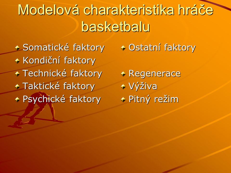 Modelová charakteristika hráče basketbalu Somatické faktory Kondiční faktory Technické faktory Taktické faktory Psychické faktory Ostatní faktory Rege