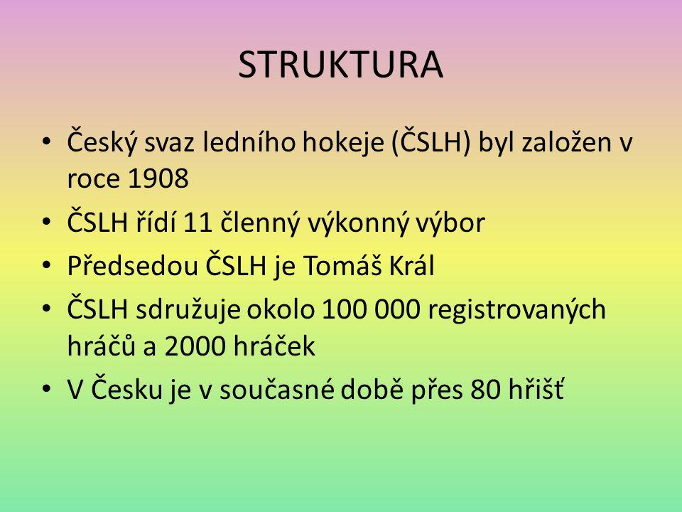 STRUKTURA Český svaz ledního hokeje (ČSLH) byl založen v roce 1908 ČSLH řídí 11 členný výkonný výbor Předsedou ČSLH je Tomáš Král ČSLH sdružuje okolo