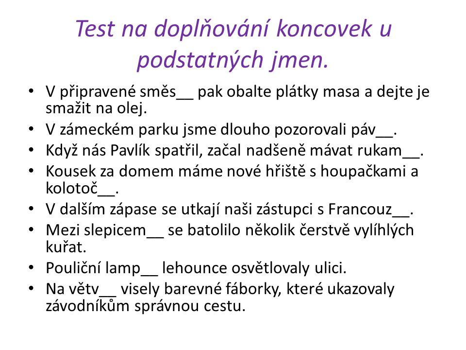 Test na doplňování koncovek u podstatných jmen.