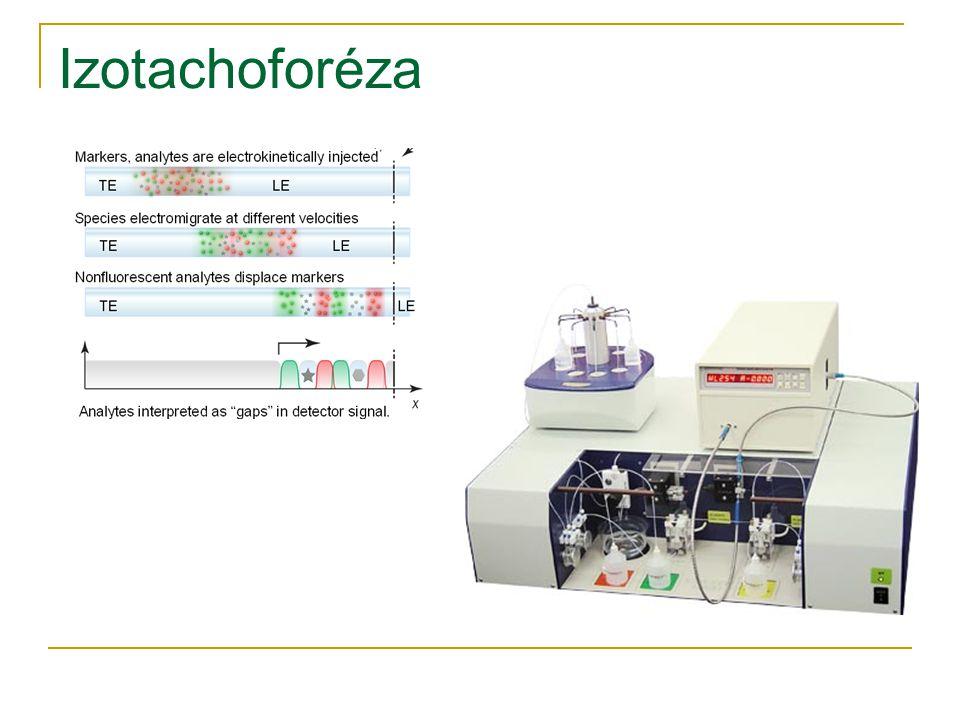 Izotachoforéza