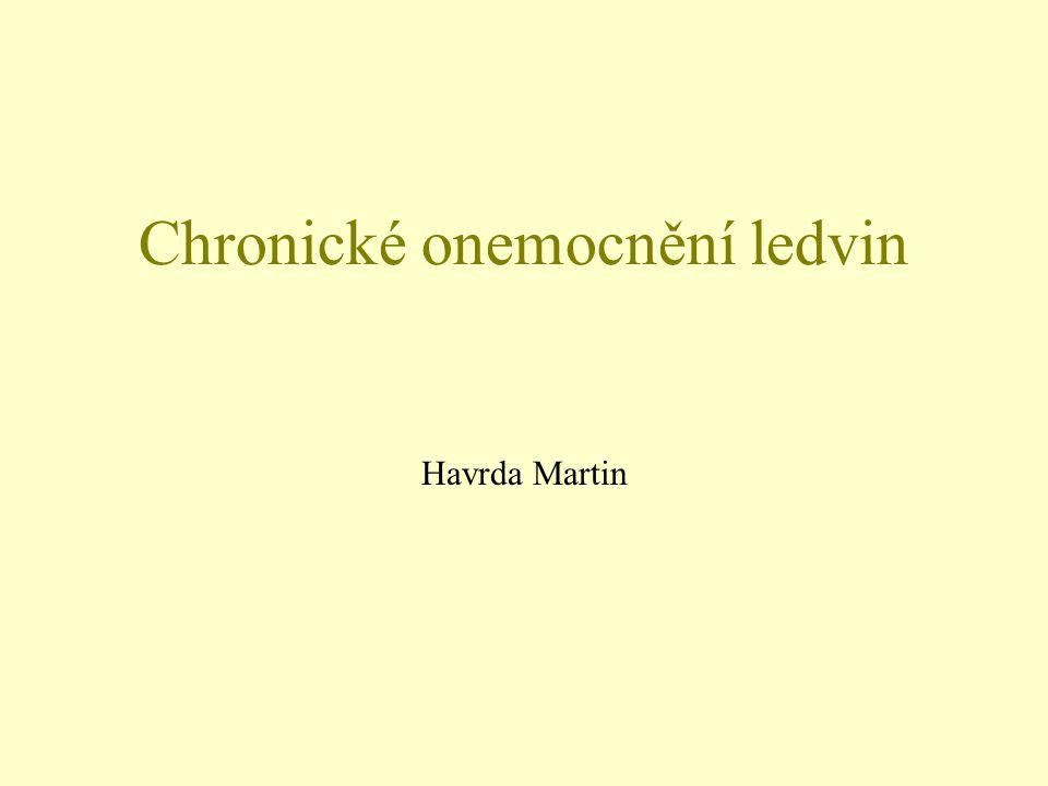 Chronické onemocnění ledvin Havrda Martin