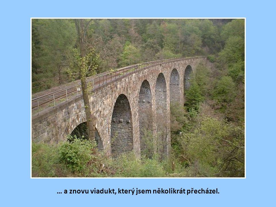 Pohled na viadukt v Žampachu z rokle Kocour …