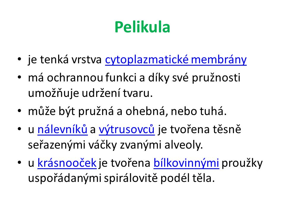 Pelikula je tenká vrstva cytoplazmatické membránycytoplazmatické membrány má ochrannou funkci a díky své pružnosti umožňuje udržení tvaru.