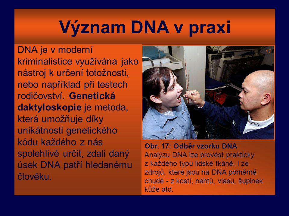 Význam DNA v praxi DNA je v moderní kriminalistice využívána jako nástroj k určení totožnosti, nebo například při testech rodičovství. Genetická dakty
