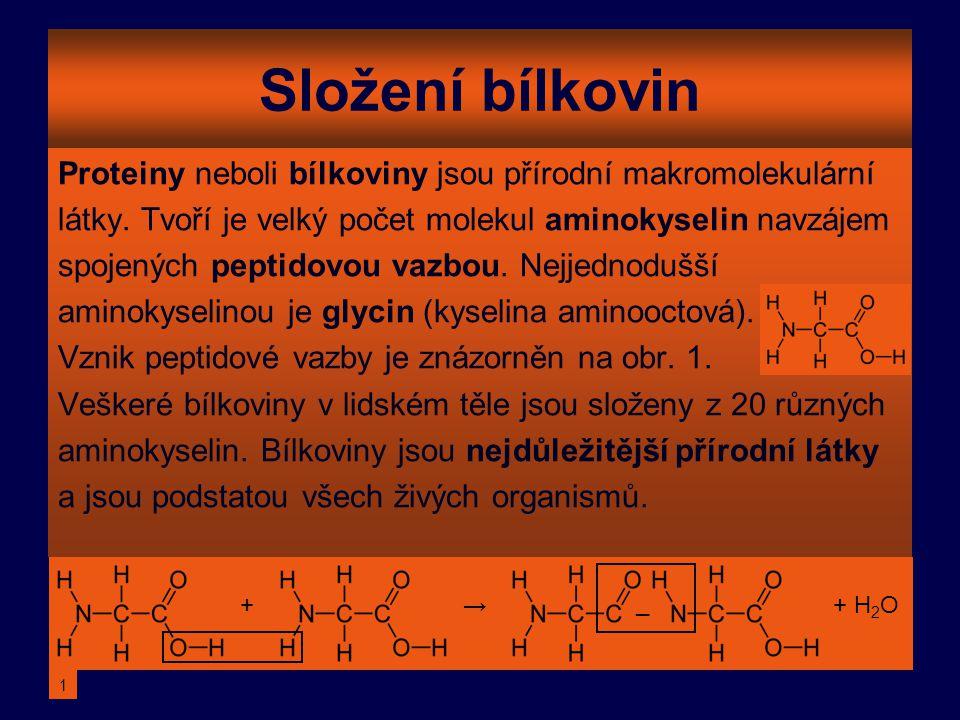 Složení bílkovin Proteiny neboli bílkoviny jsou přírodní makromolekulární látky. Tvoří je velký počet molekul aminokyselin navzájem spojených peptidov
