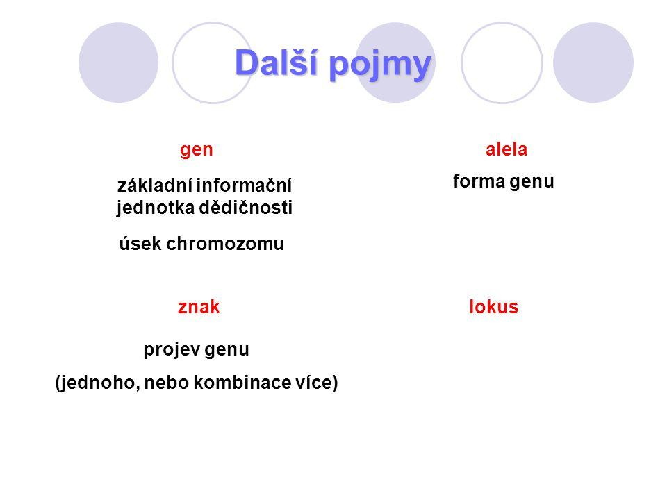 Další pojmy forma genu projev genu (jednoho, nebo kombinace více) znak úsek chromozomu gen základní informační jednotka dědičnosti alela lokus