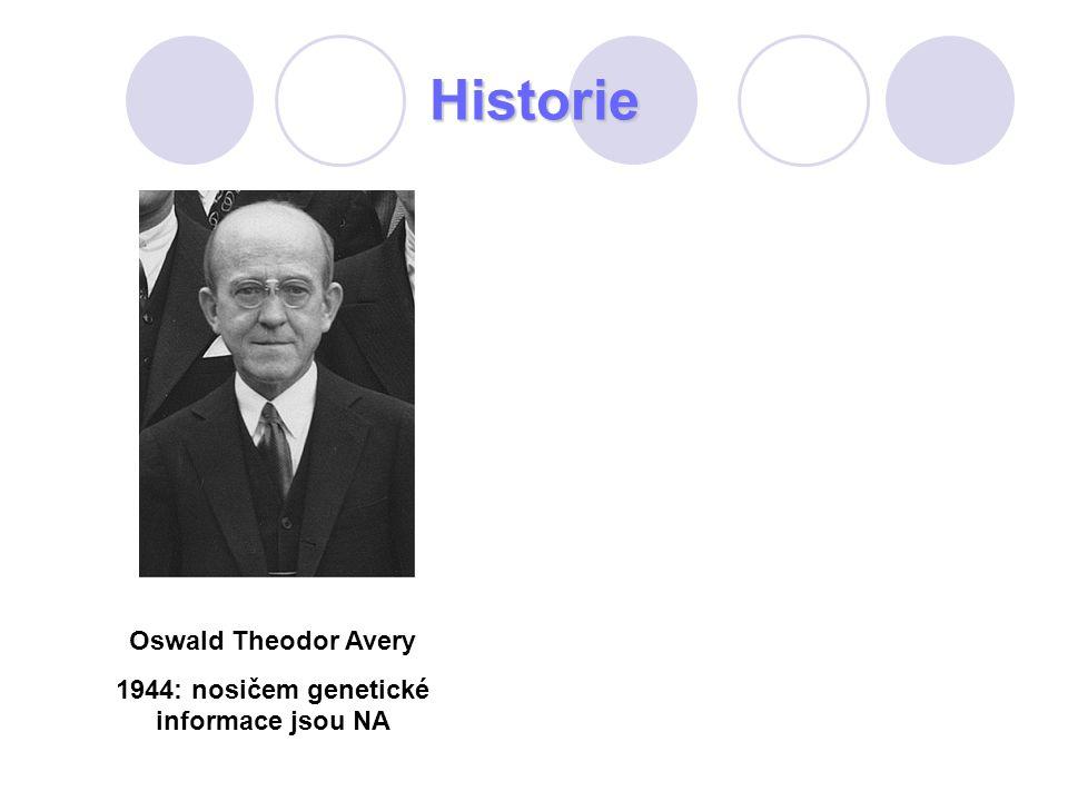 Historie Oswald Theodor Avery 1944: nosičem genetické informace jsou NA