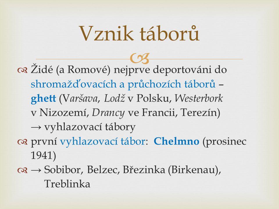   Židé (a Romové) nejprve deportováni do shromažďovacích a průchozích táborů – ghett (V aršava, Lodž v Polsku, Westerbork v Nizozemí, Drancy ve Francii, Terezín) → vyhlazovací tábory  první vyhlazovací tábor: Chelmno (prosinec 1941)  → Sobibor, Belzec, Březinka (Birkenau), Treblinka Vznik táborů