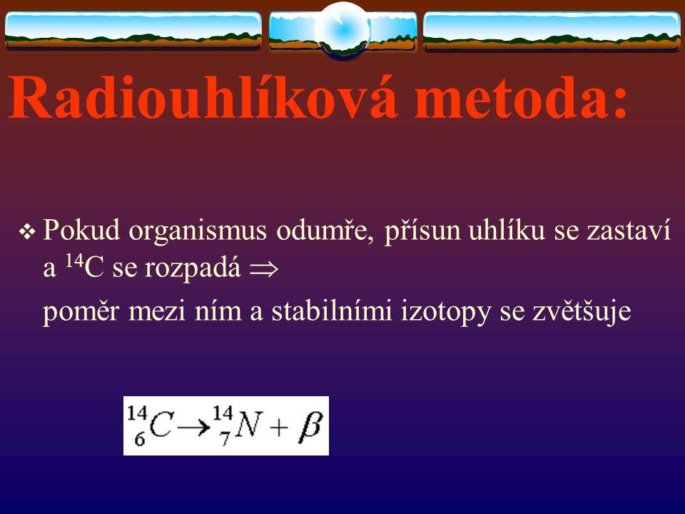 Radiouhlíková metoda:  Pokud organismus odumře, přísun uhlíku se zastaví a 14 C se rozpadá  poměr mezi ním a stabilními izotopy se zvětšuje