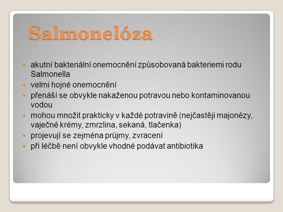 Salmonelóza akutní bakteriální onemocnění způsobovaná bakteriemi rodu Salmonella velmi hojné onemocnění přenáší se obvykle nakaženou potravou nebo kon