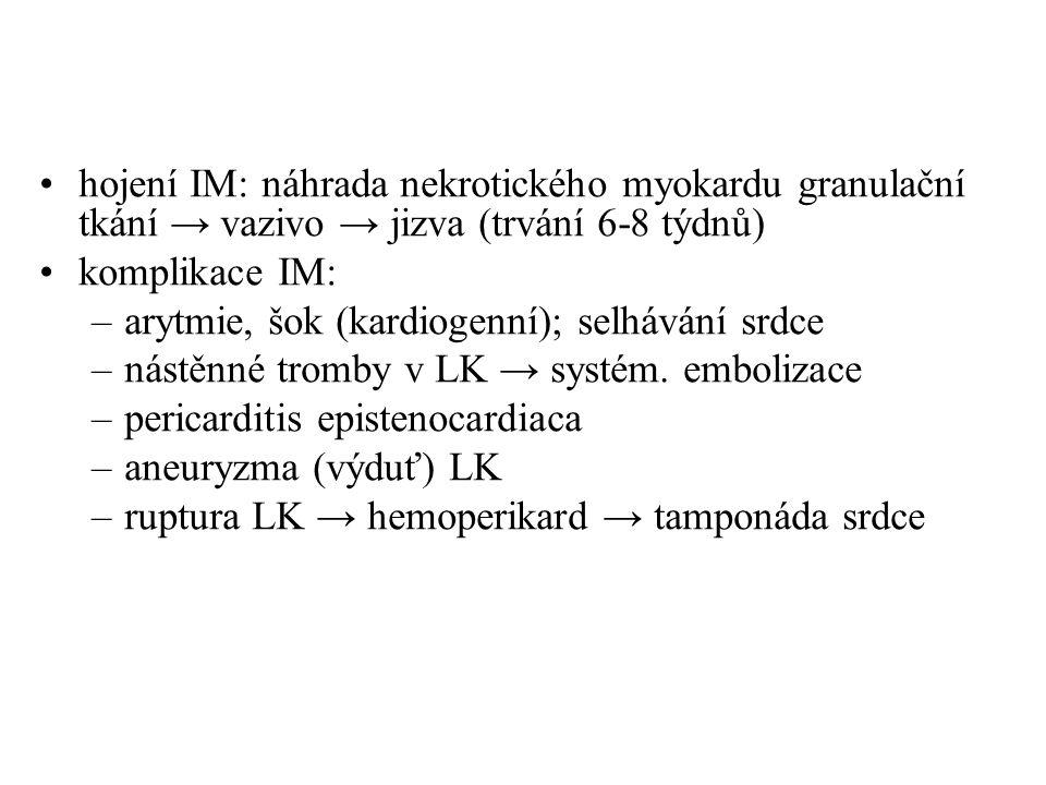 hojení IM: náhrada nekrotického myokardu granulační tkání → vazivo → jizva (trvání 6-8 týdnů) komplikace IM: –arytmie, šok (kardiogenní); selhávání sr