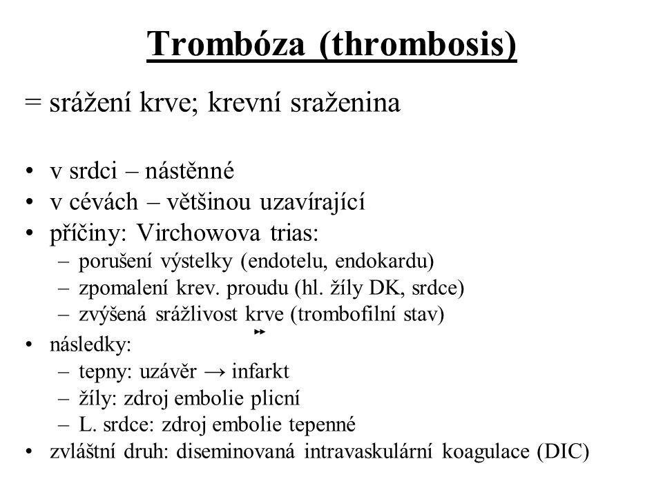 Trombóza (thrombosis) = srážení krve; krevní sraženina v srdci – nástěnné v cévách – většinou uzavírající příčiny: Virchowova trias: –porušení výstelk