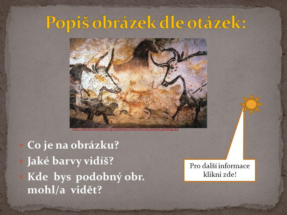 Co je na obrázku? Jaké barvy vidíš? Kde bys podobný obr. mohl/a vidět? http://upload.wikimedia.org/wikipedia/commons/1/1e/Lascaux_painting.jpg Pro dal
