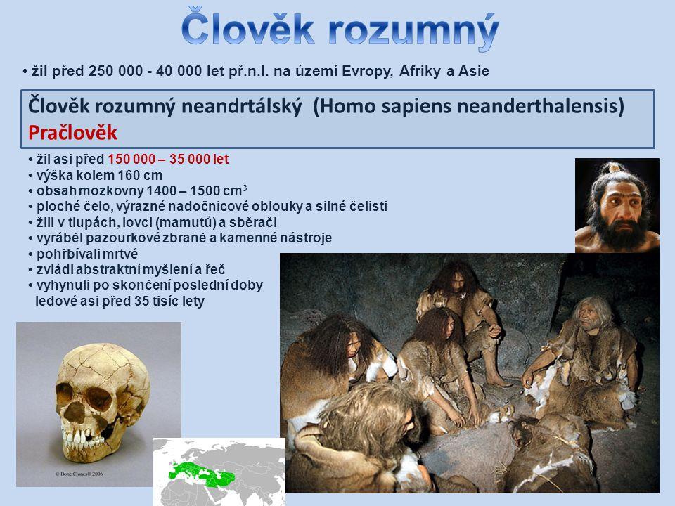 Člověk vyspělý (Homo sapiens sapiens) – člověk předvěky člověk, který se fyzicky již téměř neliší od nás žil přibližně v rozmezí mezi 40 - 10 000 lety př.