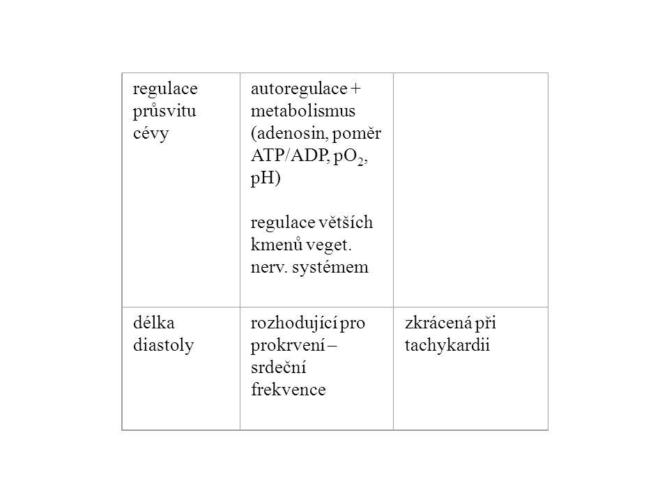 regulace průsvitu cévy autoregulace + metabolismus (adenosin, poměr ATP/ADP, pO 2, pH) regulace větších kmenů veget. nerv. systémem délka diastoly roz