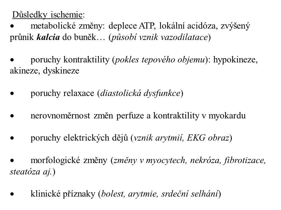 Důsledky ischemie:  metabolické změny: deplece ATP, lokální acidóza, zvýšený průnik kalcia do buněk… (působí vznik vazodilatace)  poruchy kontraktil