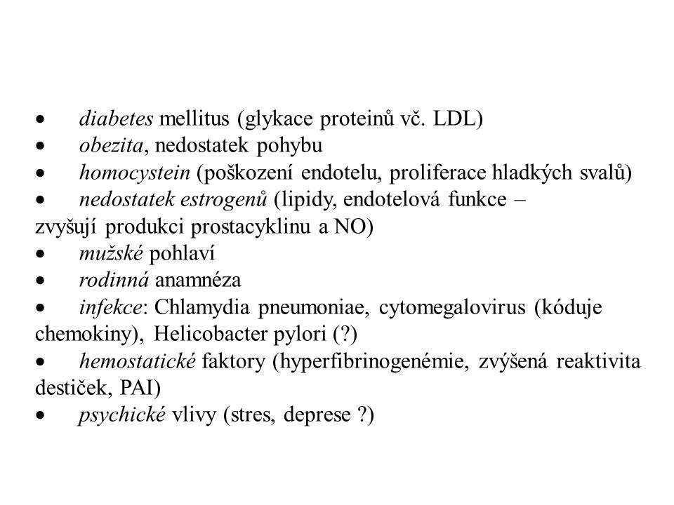 Důsledky dysfunkce a poškození endotelu  ztráta kontroly propustnosti endotelu (vyšší průnik LDL i buněčných elementů do stěny cév)  ztráta antiadhezivních vlastností, zvýšená produkce adhezivních molekul  snížení aktivity lipoproteinové lipázy  snížená produkce NO, zvýšená produkce endotelinu 1  zvýšená produkce proliferačních a chemotaktických cytokinů  snížení poměru tPA/PAI