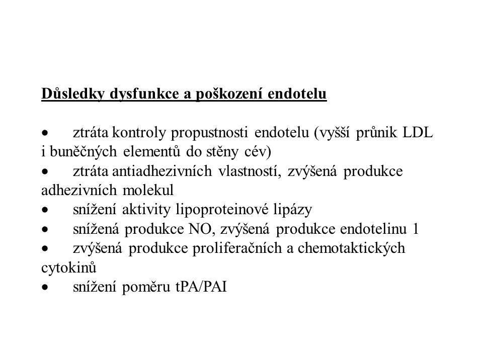 Důsledky dysfunkce a poškození endotelu  ztráta kontroly propustnosti endotelu (vyšší průnik LDL i buněčných elementů do stěny cév)  ztráta antiadhe
