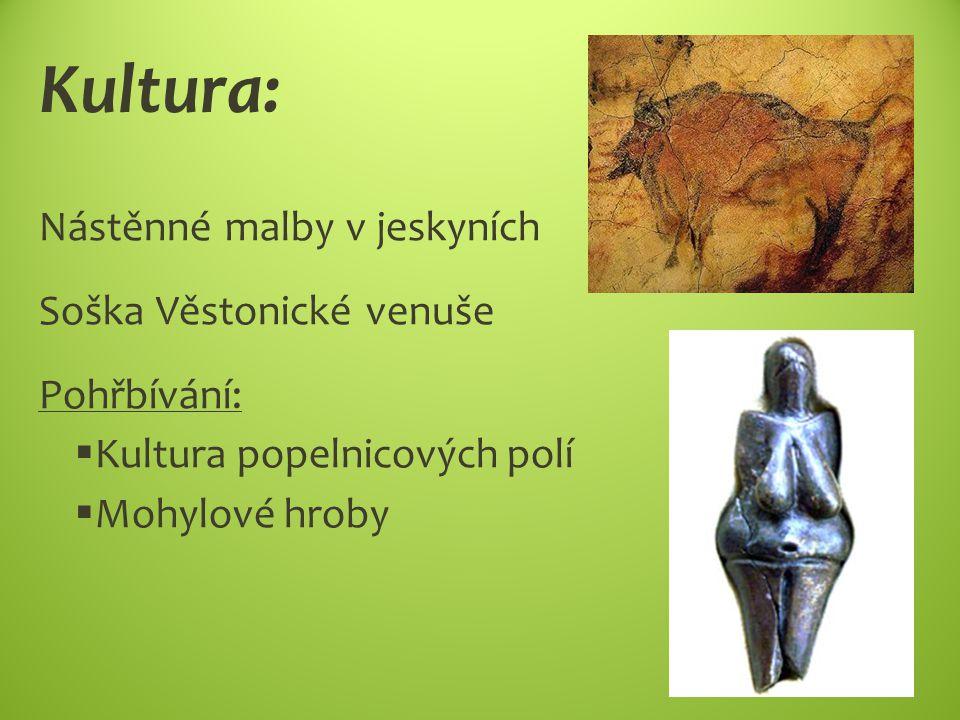 Kultura: Nástěnné malby v jeskyních Soška Věstonické venuše Pohřbívání:  Kultura popelnicových polí  Mohylové hroby