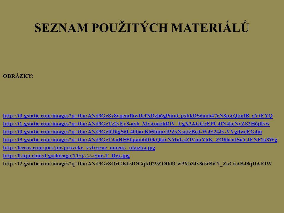 SEZNAM POUŽITÝCH MATERIÁLŮ OBRÁZKY: http://t0.gstatic.com/images?q=tbn:ANd9GcSv8vqemfhwDcfXDzh6gPmuCpxbkDS6uob47cN8pAQtmfB_aVtEYQ http://t1.gstatic.co